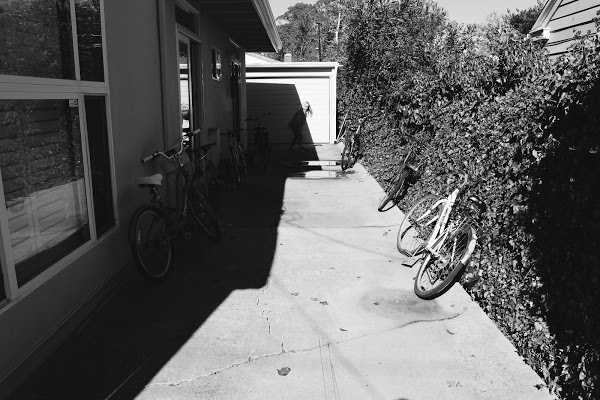 A driveway lined with bikes, at a student household in Isla Vista