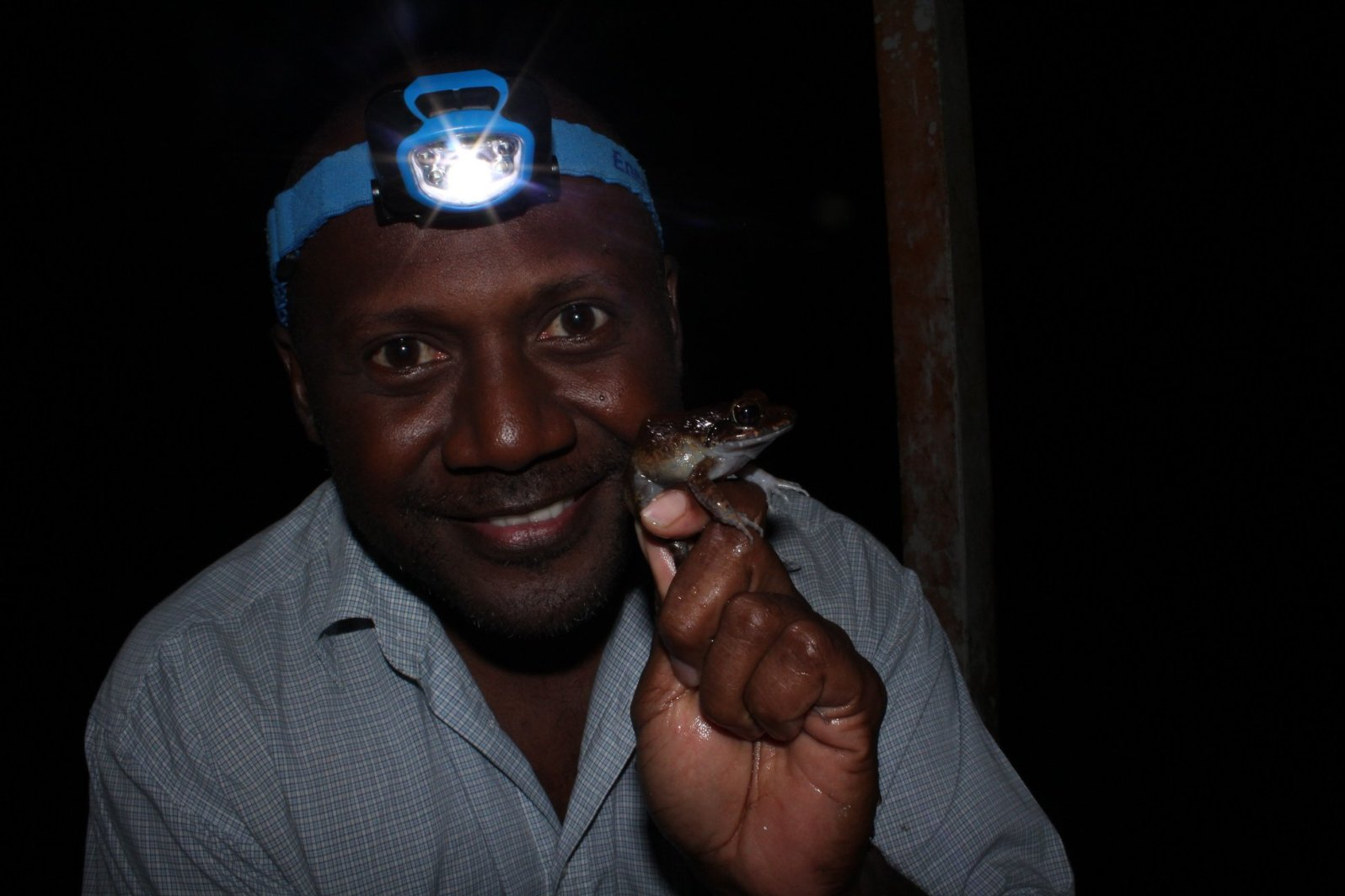Dr. Patrick Pikacha on a night transect, identifying and enjoying the abundant array of frogs